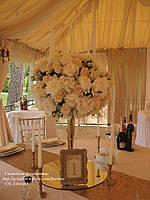 Оформление свадьбы в золотом цвете