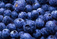 TPA TPA Blueberry Flavor (Extra) - Черника Экстра