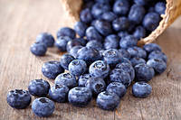 FW Flavor West Blueberry - Черника