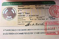 Виза Д в Украину