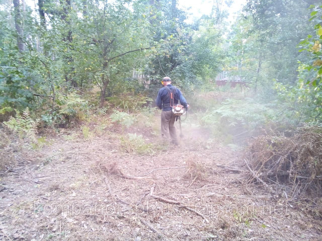 Прибирання ділянок Київ Розчищення територій