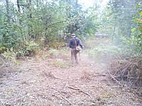Прибирання ділянок Київ Розчищення територій, фото 1