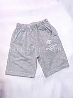 Детские шорты для мальчиков (92–116) — купить качественные летние от производителя оптом в одессе 7км