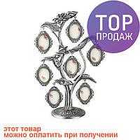 Родовое дерево, фоторамка семейное дерево на 7 фото / Фоторамка семейное дерево