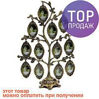 Семейное дерево фоторамка на 12 фото / Фоторамка семейное дерево