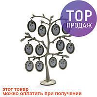Дерево фоторамка на 12 фото / Фоторамка семейное дерево