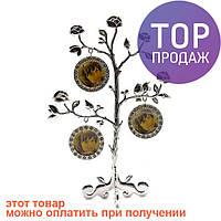 Фоторамка генеалогическое дерево на 3 фото / Фоторамка семейное дерево
