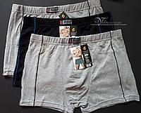 Мужские боксеры 504-3 Peseil, отличное качество. Размер XL