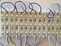 Світлодіодний модуль - кластер  SMD 5050, 3 LED Синій