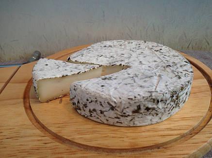 Zinka мягкий козий сыр Камамбер с белой плесенью в прованских травах /головка 250g/, фото 2