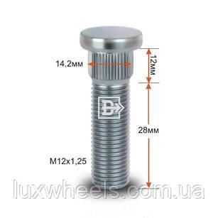 Шпилька забивна CRP142B28 M12X1,25 довжина рез.частини 28мм Цинк