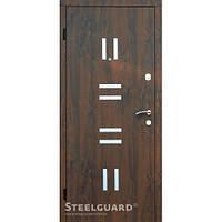 Уличные двери Steelguard Morze