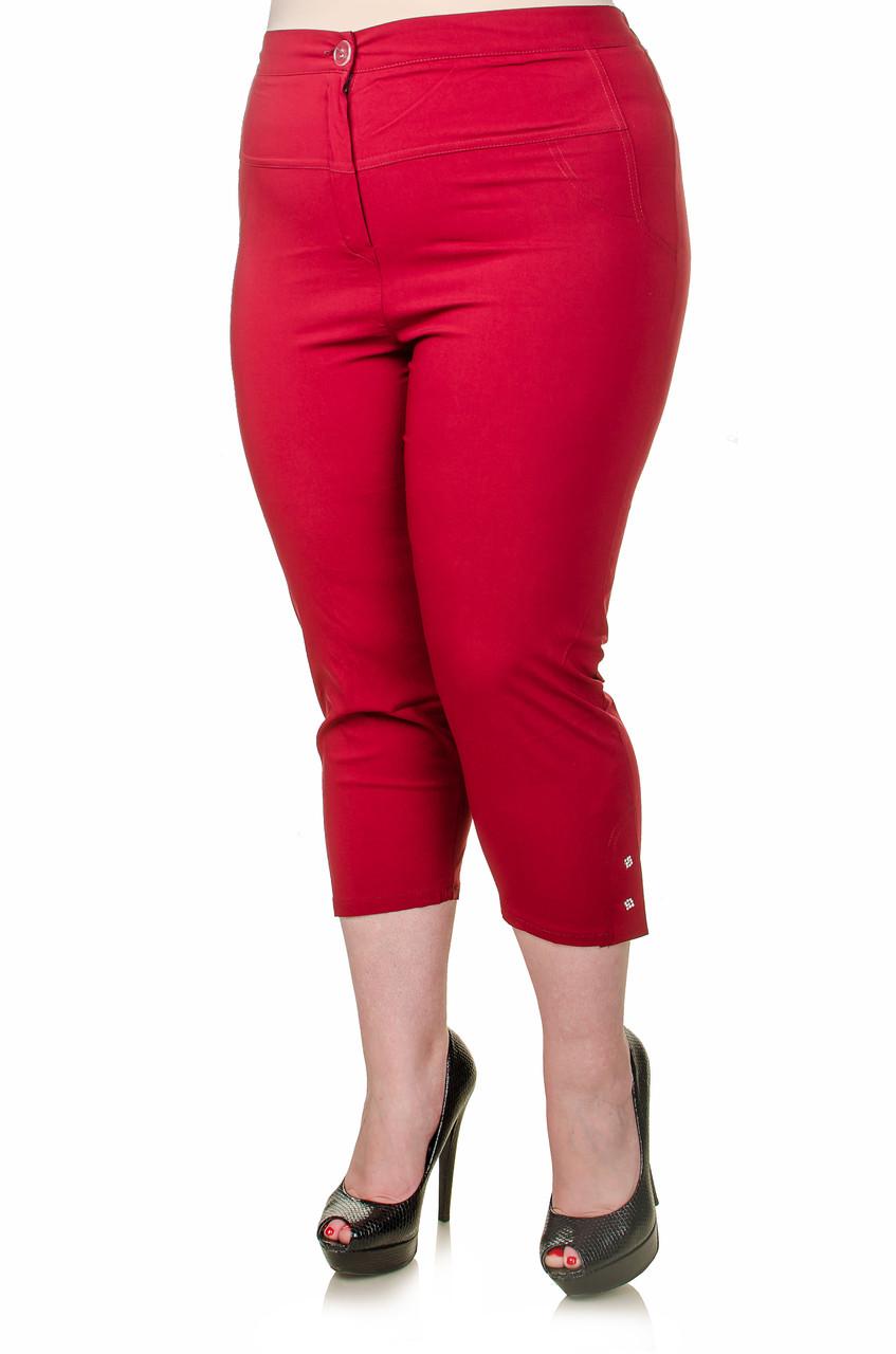 Женские капри большой размер Лето марсала 56-60 - FaShop  Женская одежда от производителя в Харькове