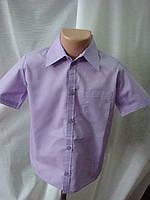 Классическая рубашка для мальчика короткий рукав сиреневая