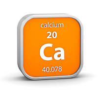 Как пополнить запасы кальция в организме?