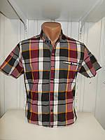 Рубашка мужская CORM короткий рукав, клетка, стрейч котон 002\ купить рубашку оптом.