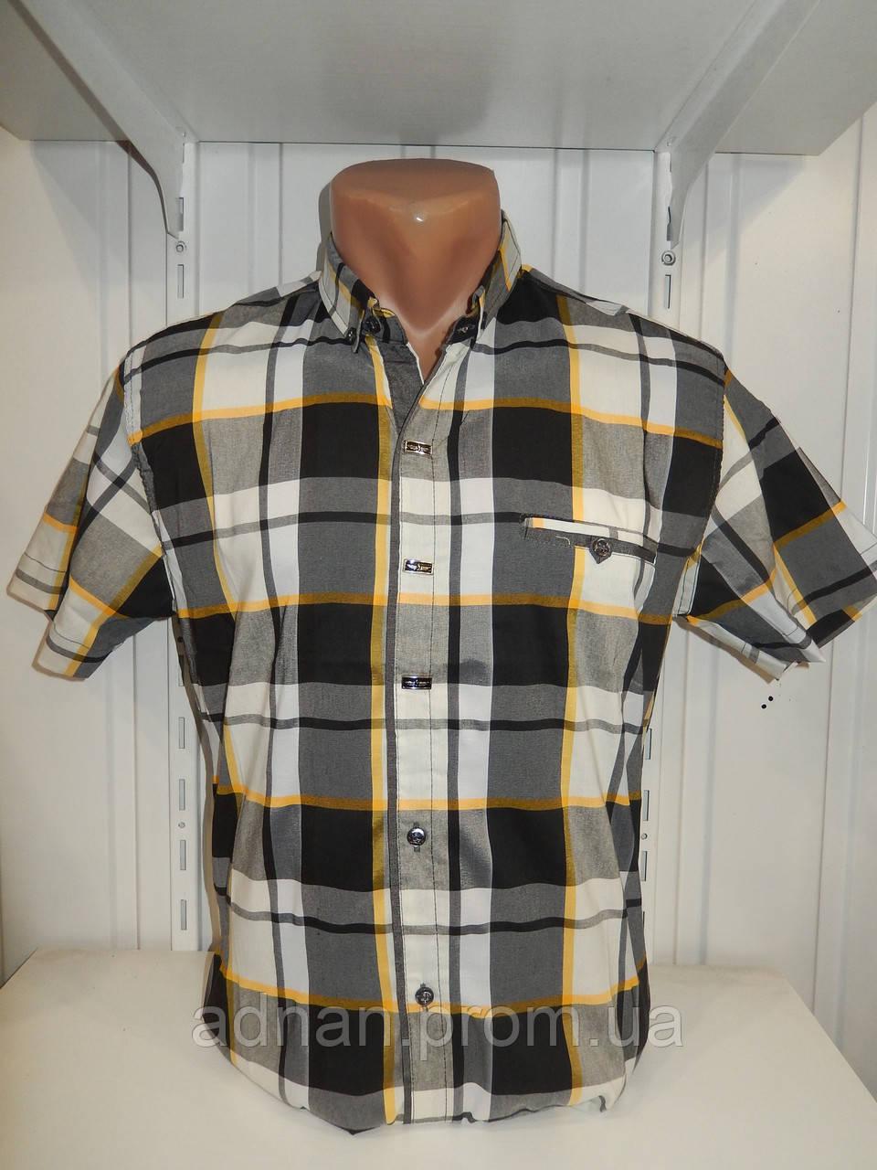 Рубашка мужская CORM короткий рукав, клетка, стрейч котон 003\ купить рубашку оптом.