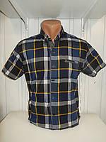 Рубашка мужская CORM короткий рукав, клетка, стрейч котон 005 \ купить рубашку оптом.