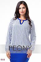 Блузка Глазго (56 размер, белый вензель) ТМ «PEONY»