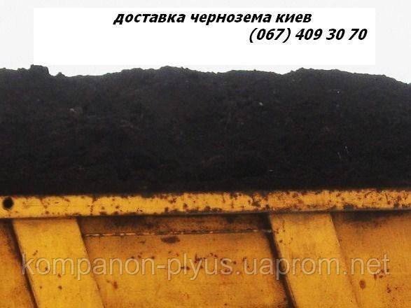 Чернозем, грунт, засыпка. Строй мусор на дорпогу. Доставка.