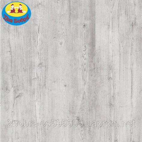 Ламинат Classen Freedom 4V 37308 | 10 мм. 32 Класс, фото 2
