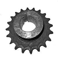 Звездочка вальца камеры (Z=20, t=25.4, dв=53мм) ПРФ-180 (Бобруйск)