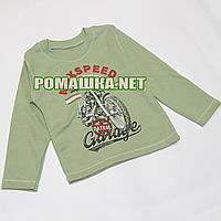 Детский реглан р. 98 (джепмер, свитшот, футболка с длинным рукавом) для мальчика 100% хлопок 3695 Оливковый