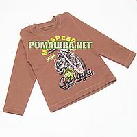 Детский реглан р. 98 (джепмер, свитшот, футболка с длинным рукавом) для мальчика 100% хлопок 3695 Коричневый