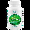 Корал Келп (Coral Kelp)