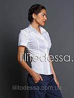 Рубашка с коротким рукавом белый до 60р, фото 1