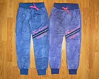 Спортивные брюки для девочек оптом, Grace, 134-164 рр