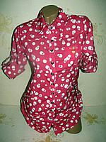 Рубашка женская, S, XL, 2XL