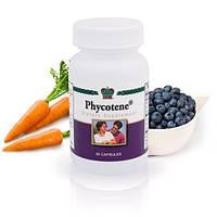 Фикотен с нанокластерами Phycotene  антиоксиданты