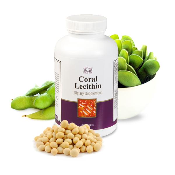 Лецитин Lecithin - защита печени и питание мозга Улучшает память