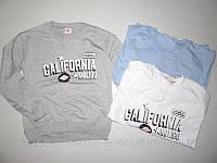 Свитшот кофта для девочек Glo-Story California  (разные цвета)