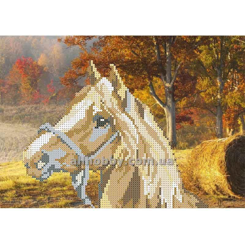 Схема для вышивания бисером Лошадь БИС4-34 (А4)