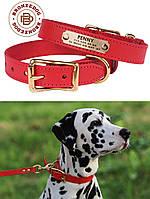 Кожаный ошейник для собак BronzeDog + адресник с гравировкой