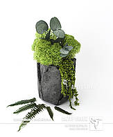 """Экосувениры со стабилизированным растения и мхом от """"Artis Green"""""""