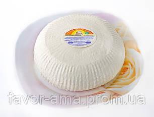 Сыр Любительский АМА 50% жира в сухом веществе, фото 2