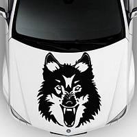 Виниловая наклейка на авто - на капот(злой волк 00)