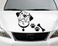 Виниловая наклейка на авто - на капот(пес лапки кость)