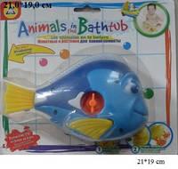 Рыбка, водоплавающая, заводная, на планшетке 21*19см, 2898-2