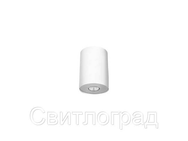 Светильник точечный накладной Nowodworski Новодворски  POINT WHITE SILVER / WHITE GRAPHITE L