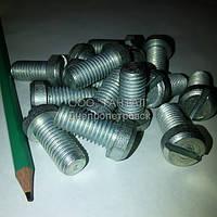 Винт с цилиндрической головкой М12х25 оцинкованный ГОСТ 1491-84 производство ТАНТАЛ сталь 10