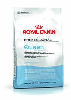 Royal Canin QUEEN - корм для кошек в период беременности и лактации, 4кг