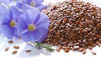 Семена льна Украина. Фасовка 1 кг