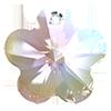 Хрустальные подвески цветок Preciosa (Чехия) 14 мм Crystal AB