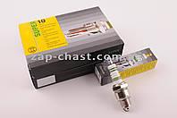 """Свеча   E6TC   M14*1,25 12,7mm   (2T скутеры 50-125сс)   """"BSC"""""""