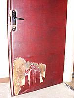 Когда собачка порвала дверь.