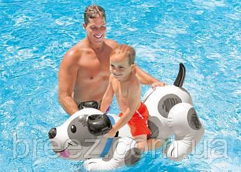 Детский надувной плотик для плавания Intex 57521 Щенок108 см , фото 2